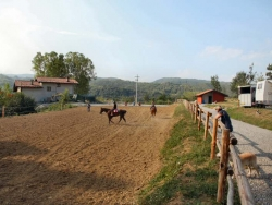 Riding Stables in Piedmont, Italy