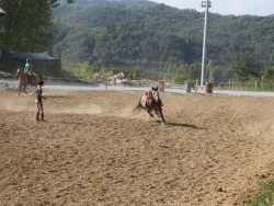 Riding School in Piedmont