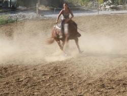 Scuola di equitazione a Priero